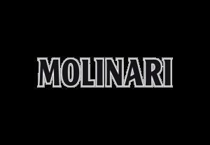 Logo_Molinari